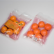 citrus - Twin-Bag foliezak